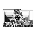 Shop Black Lion Audio At Sam Ash