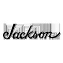 Shop Jackson At Sam Ash