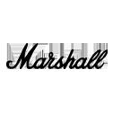 Shop Marshall At Sam Ash