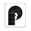 Shop Peerless Guitars At Sam Ash