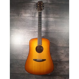 Baden D-Style Acoustic-Electric Guitar