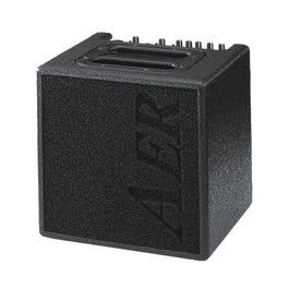 AER Alpha 40-watt Combo Acoustic Guitar Amplifier