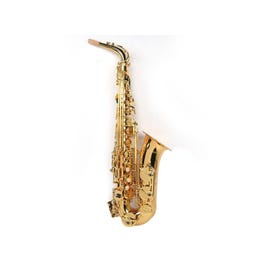 Image for AS100 Beginner Alto Saxophone Outfit from SamAsh