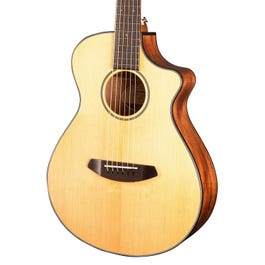 Image for Discovery Companion CE Acoustic-Electric Guitar from SamAsh