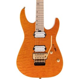 Image for Pro-Mod DK24 HH FR Electric Guitar from SamAsh