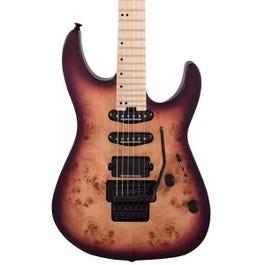 Image for Pro-Mod DK24 HSS FR M Poplar Electric Guitar from SamAsh
