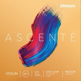 Image for Ascente Violin String Set (Assorted Sizes) from SamAsh