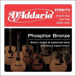 Image for EPBB170 Reg Light Phos Bronze Acoustic Bass Strings from SamAsh