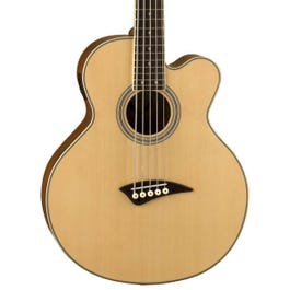 Image for Playmate Cutaway 5 String Acoustic Electric Bass from SamAsh