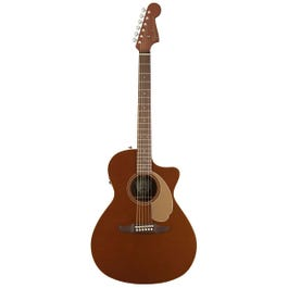 Image for Newporter Player Acoustic-Electric Guitar from SamAsh