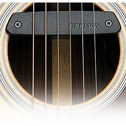 Image for NeoD Passive Magnetic Soundhole Acoustic Guitar Pickup from SamAsh