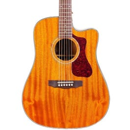 Image for Westerly Collection D-120CE Dreadnought Acoustic-Electric Guitar (Natural) from SamAsh