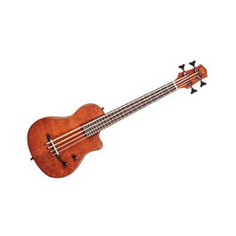 Image for ME-BASS Micro-Electric Bass (Fretless) from SamAsh
