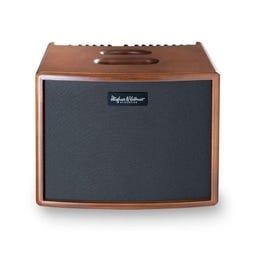 Image for Era 1 250-Watt Acoustic Guitar Combo Amplifier from SamAsh