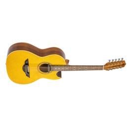 Image for El Esta'ndar El Estandar Acoustic-Electric Bajo Quinto Gold Sparkle from SamAsh
