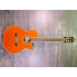 Ibanez AEG10NETWG1401 Classical Acoustic Guitar(Tangerine)