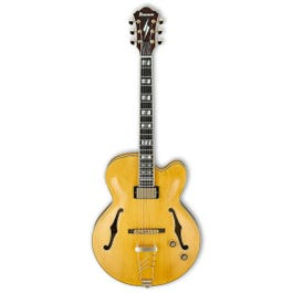 Image for PM2 Pat Metheny Signature Hollow Body Electric Guitar from SamAsh