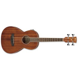Image for PNB14E Acoustic-Electric Bass Guitar from SamAsh