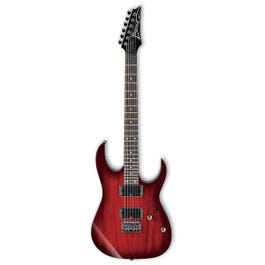 Image for RG421 Electric Guitar from SamAsh