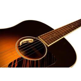 L. R. Baggs Anthem Acoustic Guitar Pickup & Microphone