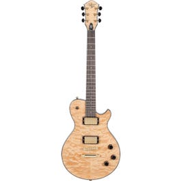 Michael Kelly 20th Anniversary Patriot Electric Guitar