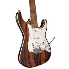 Image for CC65 Ebony Custom Collection Electric Guitar from SamAsh