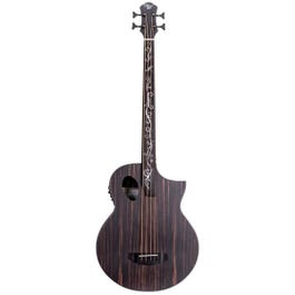 Image for Dragonfly 4 Port Java Ebony Fretless Acoustic-Electric Bass from SamAsh