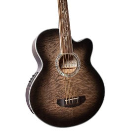 Image for Dragonfly Fretless 5-String Acoustic-Electric Bass Guitar from SamAsh