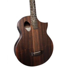 Image for Dragonfly 5 Port Java Ebony 5-String Acoustic-Electric Bass Guitar from SamAsh