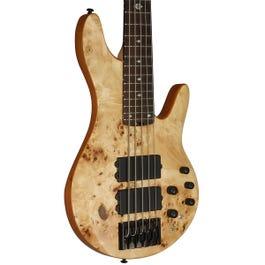Michael Kelly Pinnacle 5 5-String Bass Guitar