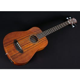 Image for Sojourn 4K Acoustic Travel Bass (Open Box) from SamAsh