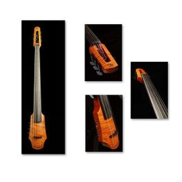 Image for CR6 Electric 6 String Cello Outfit from SamAsh