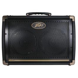 "Image for Ecoustic E208 30-Watt 2x8"" Acoustic Guitar Combo Amplifier from SamAsh"