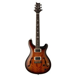 Image for SE Hollowbody Standard Semi-Hollow Body Electric Guitar from SamAsh