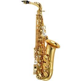 P.Mauriat PMSA-180G1 Alto Saxophone Outfit