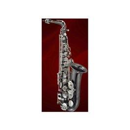 Image for PMSA-500BXSK Alto Saxophone from SamAsh