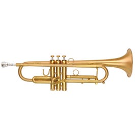 Image for Professional Series PMT-72M Bb Trumpet from SamAsh