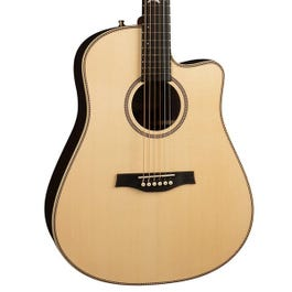 Image for Artist Studio CW Element Acoustic-Electric Guitar (Demo) from Sam Ash