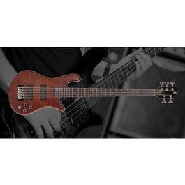 Image for Legend 5 Neck-Thru 5-String Bass Guitar from SamAsh