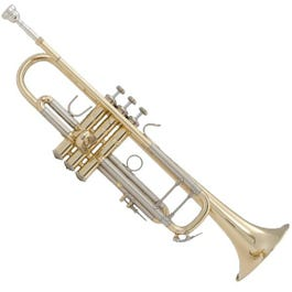 Image for LR180 Stradivarius Trumpet (Lacquer/43 Bell) from SamAsh
