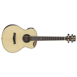 Image for CL-3E Acoustic-Electric Bass from SamAsh