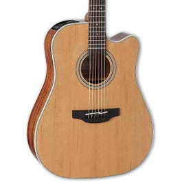 Image for GD20CE-NS Dreadnought Acoustic-Electric Guitar for SamAsh