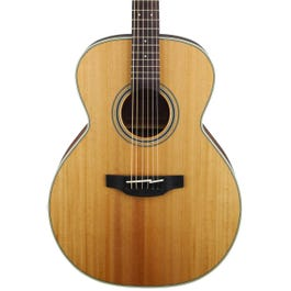 Image for GN20-NS Acoustic Guitar from SamAsh