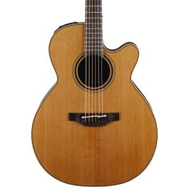 Image for Pro Series 3 NEX Cutaway Acoustic-Electric Guitar with Case from SamAsh