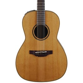 Image for Pro Series 3 New Yorker Acoustic-Electric Guitar with Case from SamAsh