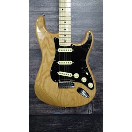 Fender 2019 American Professional Stratocaster Electric Guitar (Natural)