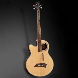 Image for Alien Deluxe 4-String Acoustic-Electric Bass Guitar from SamAsh