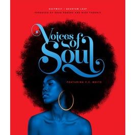 Image for Voice of Soul (Digital Download) from SamAsh