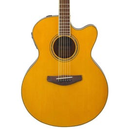 Image for CPX600 Acoustic-Electric Guitar from SamAsh