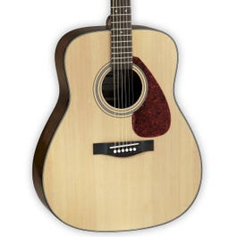 Image for GigMaker Standard Acoustic Guitar Package from SamAsh